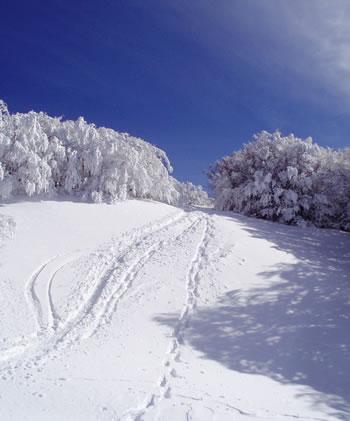 campignainverno2