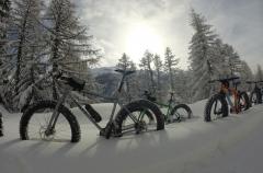 fat bike-2